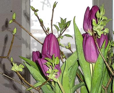 3februari2008.jpg